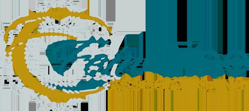 DYNACHEM announces acquisition of dynachem.org domain